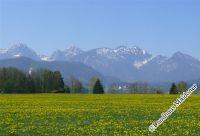Frühjahr -