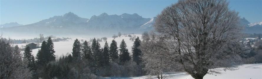 Winterpanorama_Dietringen